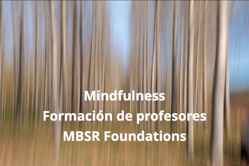 Formación Mindfulness para profesores