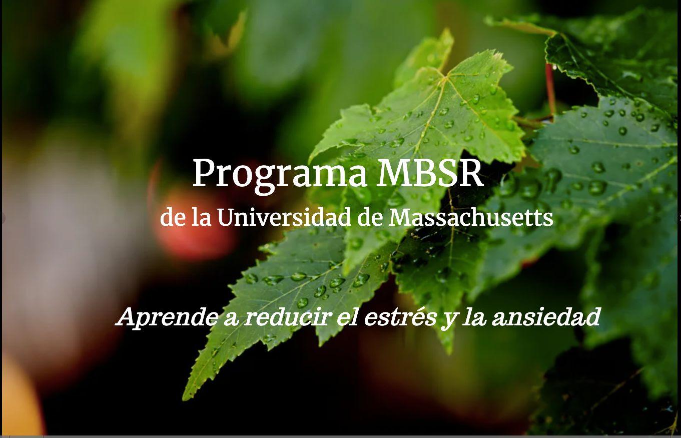 Programa de Reducción de estrés basado en Mindfulness (MBSR 8 semanas_online)